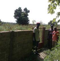 Muro IBel OCT17